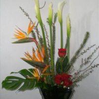 E53 - Arreglo Exótico en Base de Vidrio con Aves y Rosas